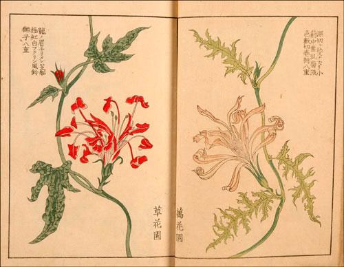 名古屋園芸・花の博物館
